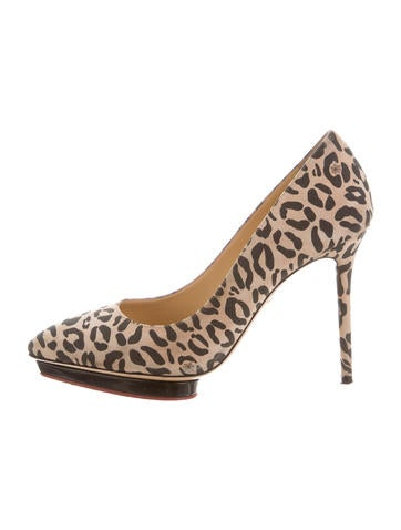 Charlotte Olympia Suede Printed Pumps None