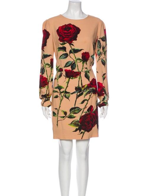 Dolce & Gabbana Rose Print Mini Dress Rose