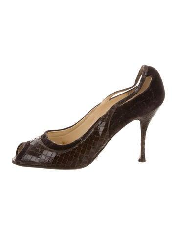 Dolce & Gabbana Velvet-Accented Python Pumps None