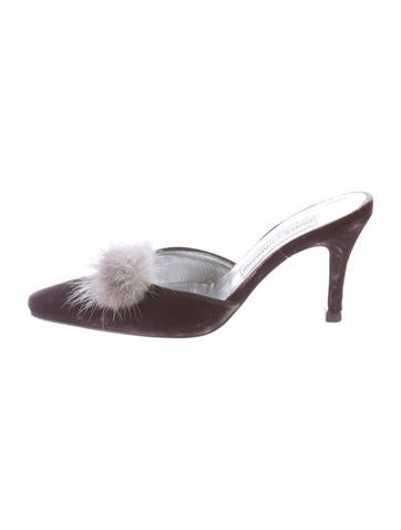Dolce & Gabbana Velvet Mule Pumps None