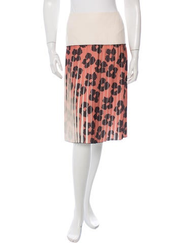 Dries Van Noten Pleated Floral Print Skirt