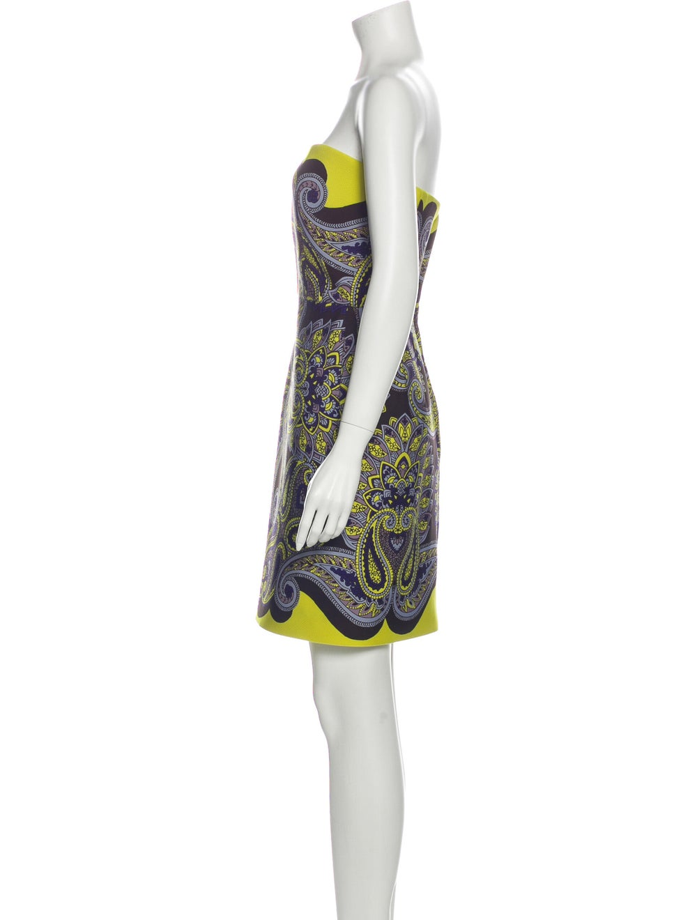 Lanvin Paisley Print Mini Dress Brown - image 2
