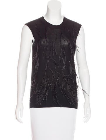 Lanvin Feather-Embellished Knit Top None