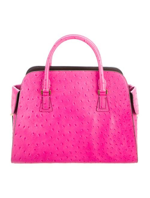 Michael Kors Gia Ostrich Handle Bag