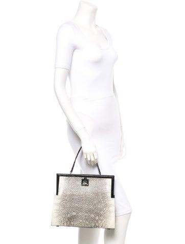 Framed Lizard Handle Bag