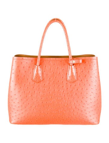 Ostrich Double Tote