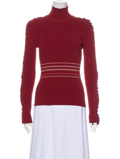 Roksanda Striped Turtleneck Sweater