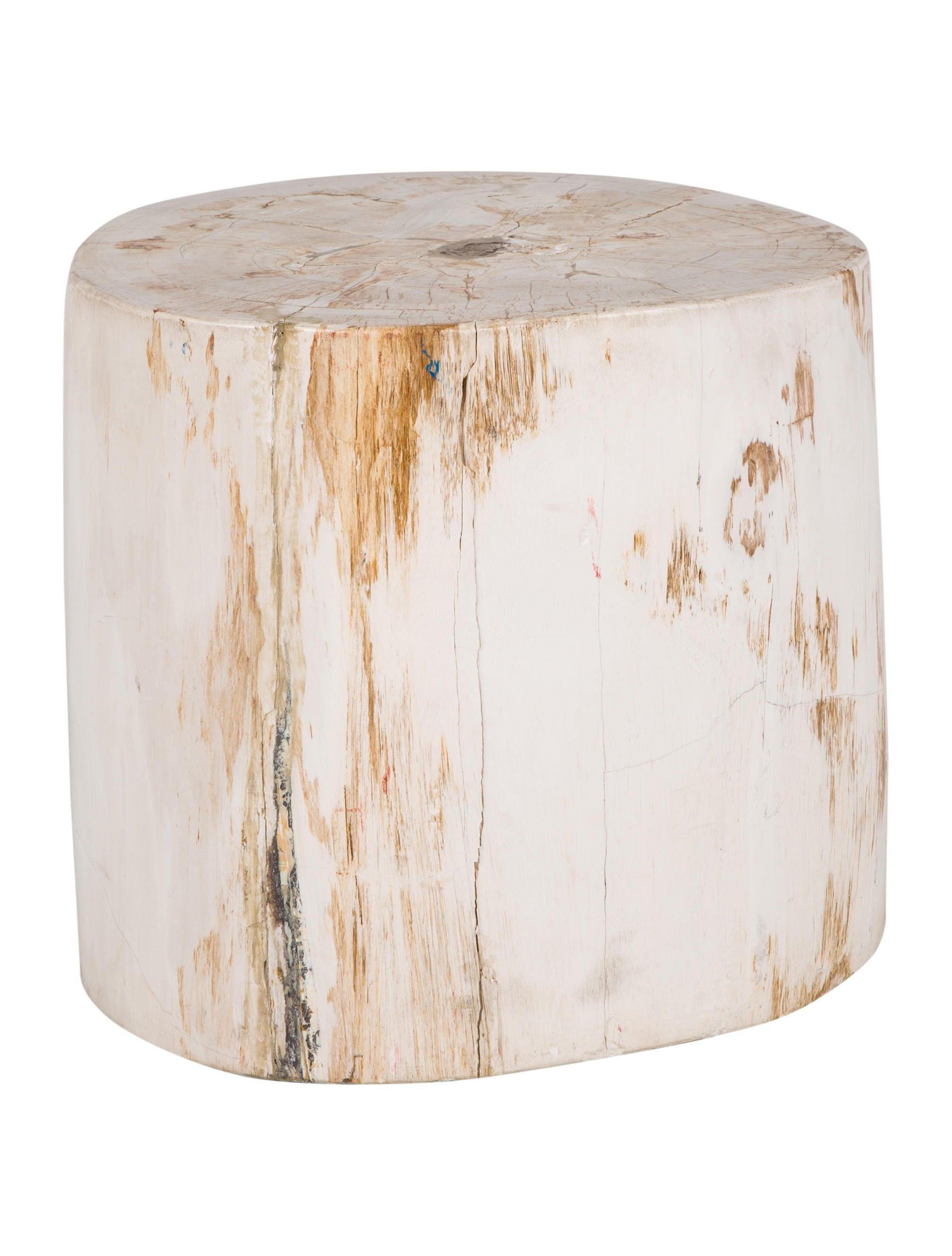 Petrified Wood Side Table Furniture TABLE