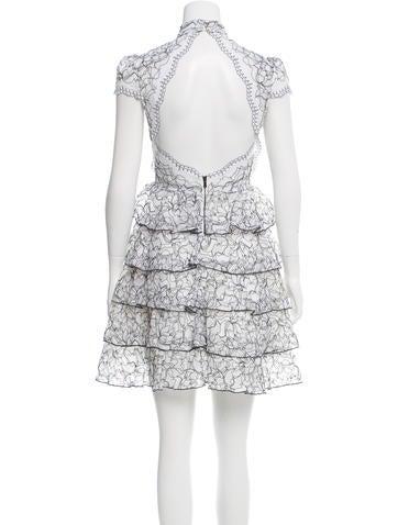 Lace-Embroidered Mini Dress
