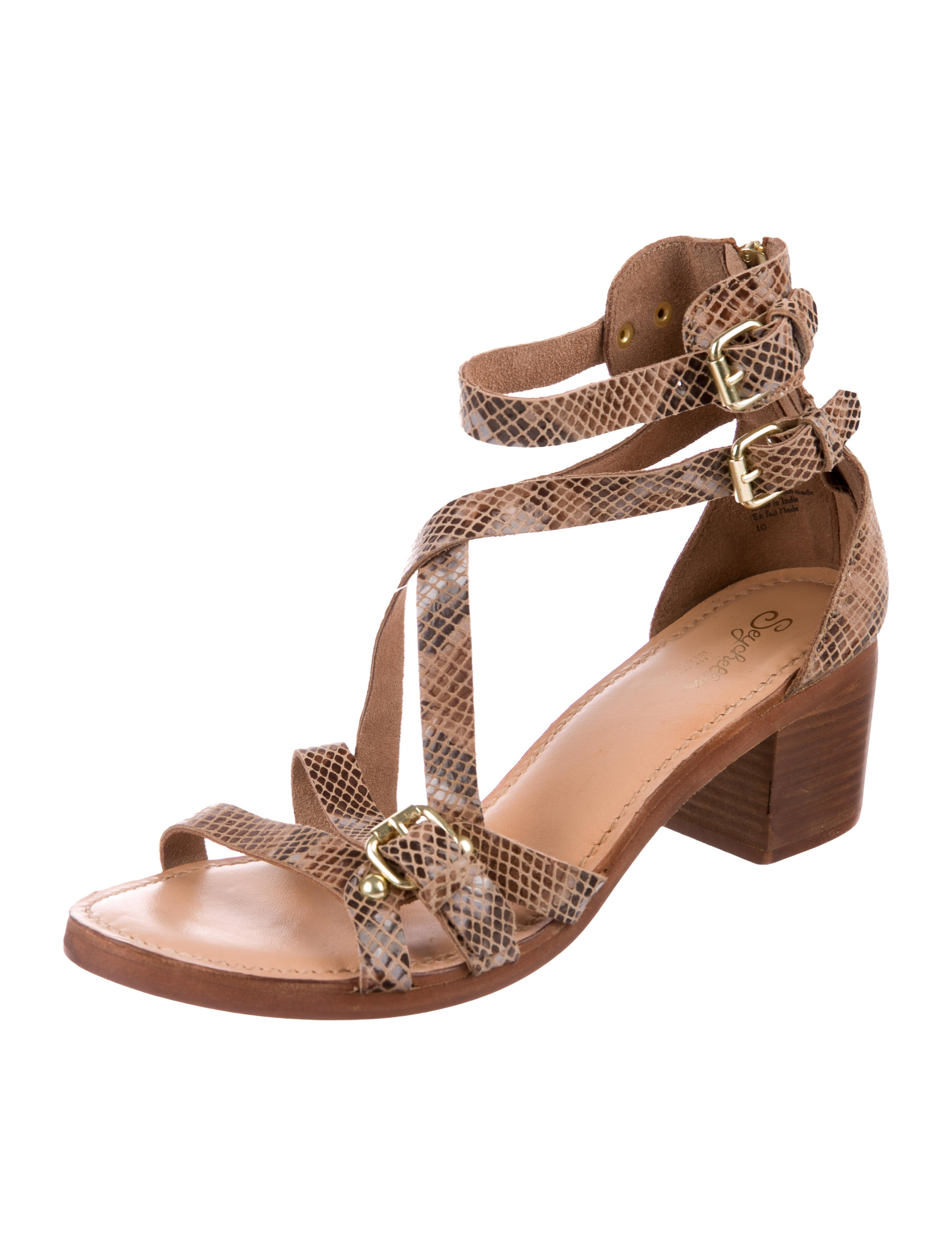Seychelles Leather Multistrap Sandals clearance exclusive hUu1TT3PQZ