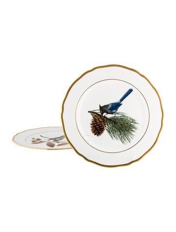 Spode American Songbird Plates None