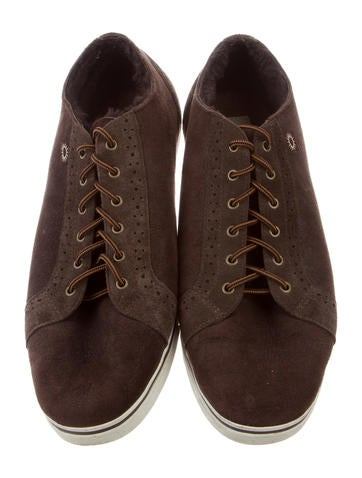 Roxford Suede Sneakers