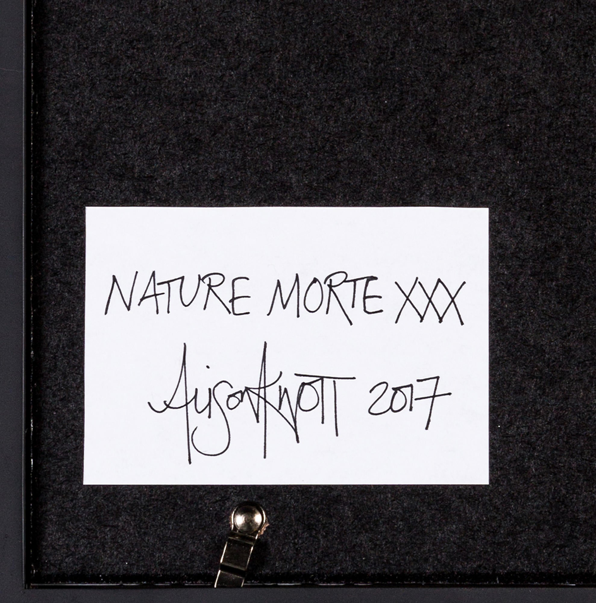 Souvent Alison Knott Nature Morte XXX 2017 MXM20398 | The RealReal UF51